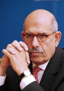 Dostor Party Chairman Mohamed El-Baradei AFP PHOTO / DIETER NAGL