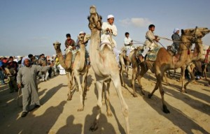 Sinai Bedouins met with security officials in a village near the Al-Halal mountains, North Sinai. AFP