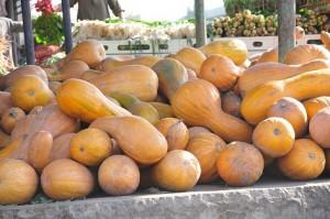 Pumpkins By Hassan Ibrahim