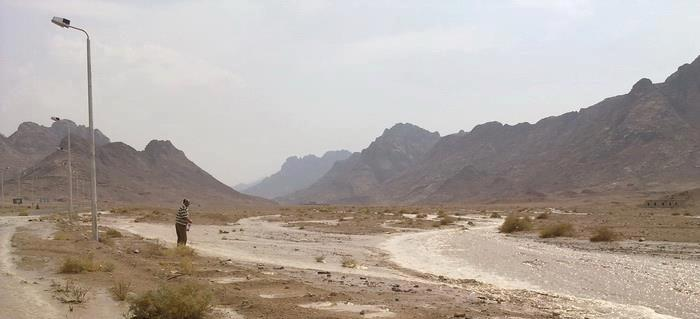A new company hopes to cultivate up to 200,000 feddans of land in North Sinai. (DNE/ Nasser El-Azazy)