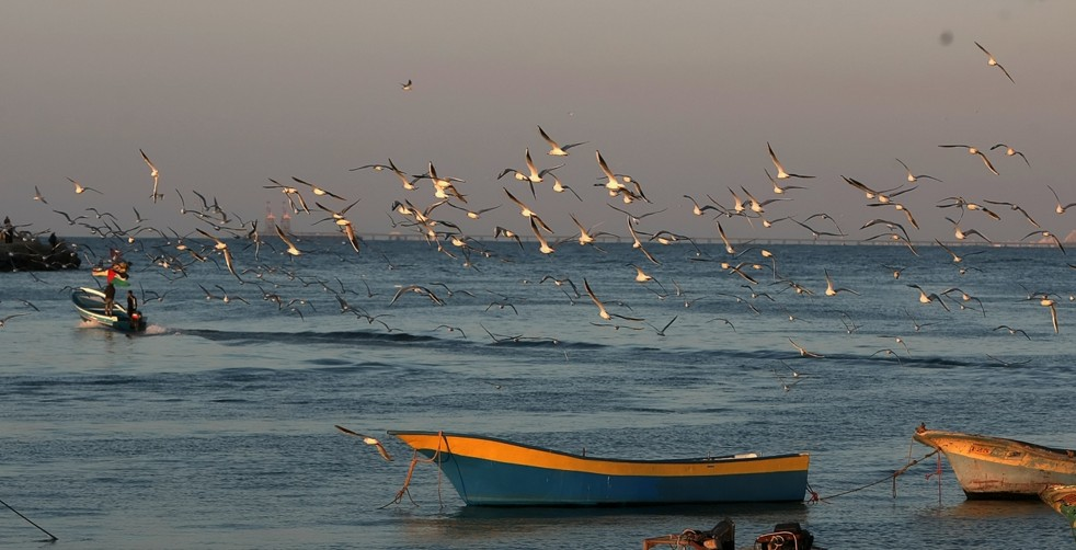 Fishing boats lie in the water off the coast of Gaza AFP Photo / Mahmud Hams