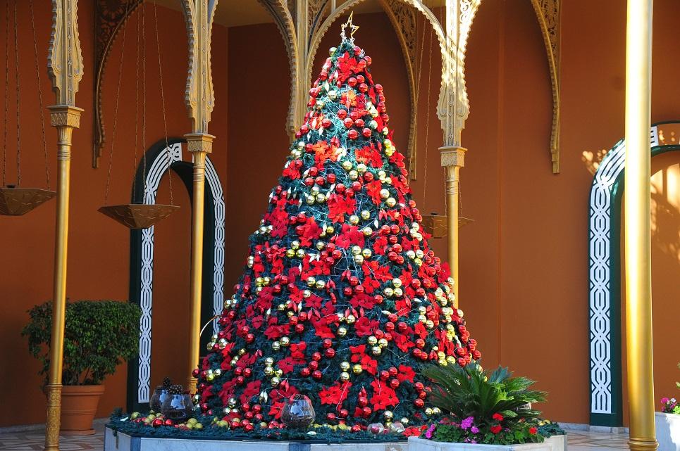 Christmas tree Hassan Ibrahim