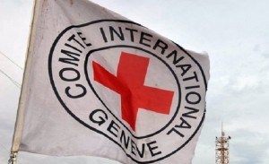The committee also addressed the ICRC's request to accelerate the issuance of a law protecting the emblems of the Red Cross and the Red Crescent. This goal is of particular importance to the ICRC as these emblems have been widely misused in Egypt (AFP\Photo)