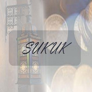 Sukuk is expected to finance needed investments, says official