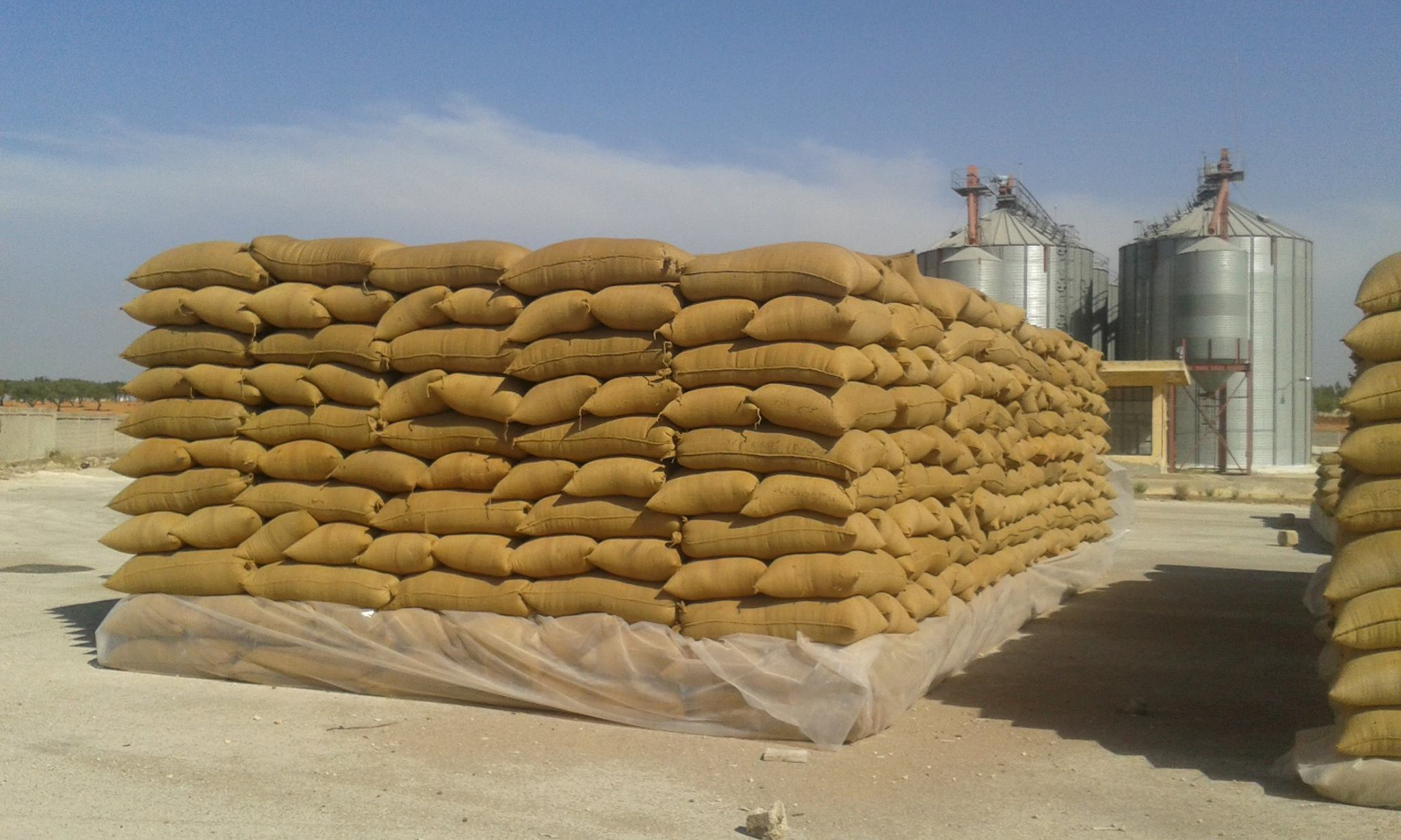 The wheat sector was rattled again when Blumberg Grain threatened to exit the Egyptian market if its projects in the country did not solely fall under the supervision of the Armed Forces Engineering Authority, instead of the Ministry of Supply.  (DNE Photo)