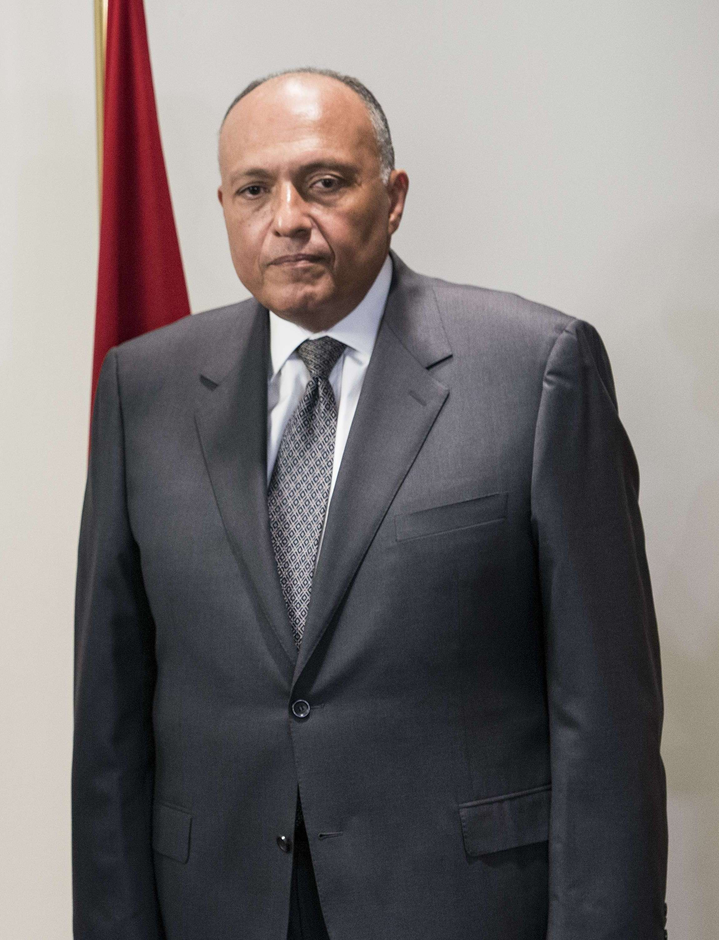 Egyptian Foreign Minister Sameh Shoukry. (AFP File Photo)