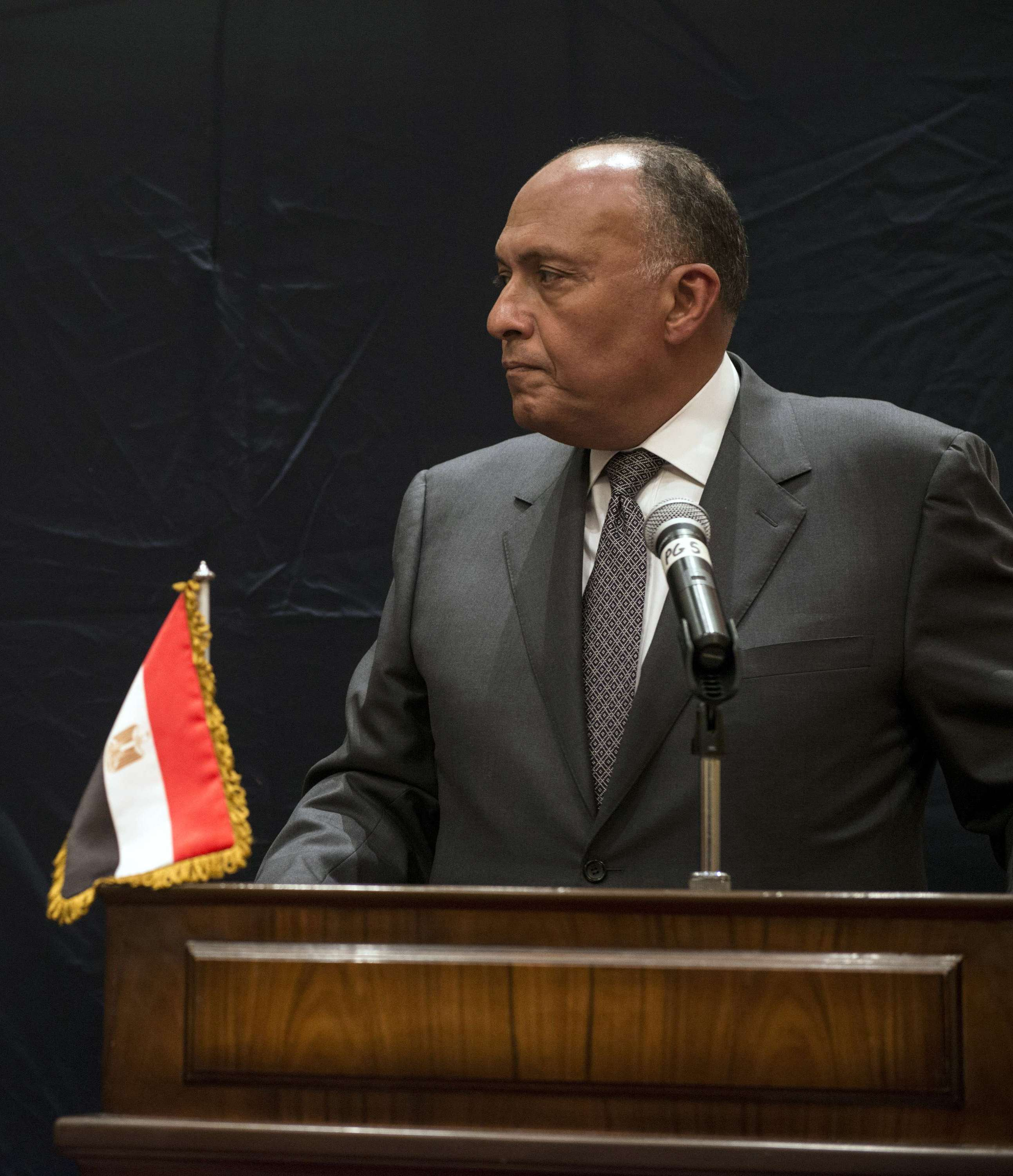 Foreign Minister Sameh Shoukry. (AFP Photo)