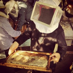 Participant in the urban beekeeping workshop shows a comb with honey (Photo from Nawaya Facebook page)