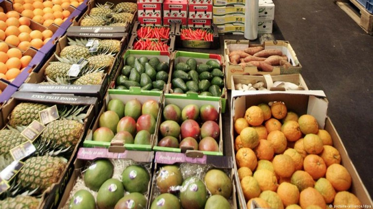 Europe golden opportunity for Egyptian food exports - Daily