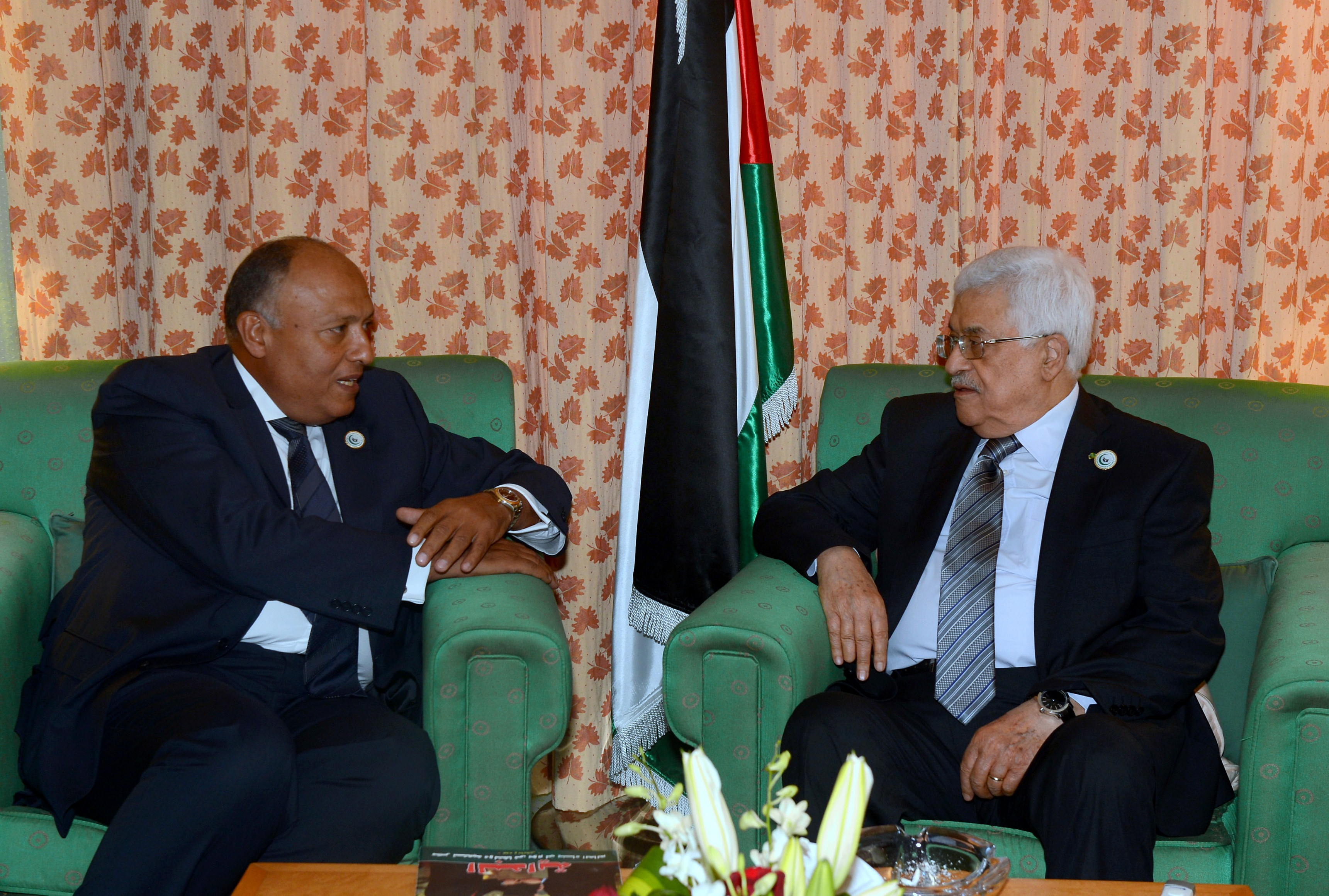 Palestinian president Mahmoud Abbas (R) meets new Egyptian Foreign Minister Sameh Shoukry in Jeddah in the sidelines of the meeting of the Organisation of Islamic Cooperation in Jeddah, on June 18, 2014.  (AFP PHOTO/ PPO / THAER GHANAIM )