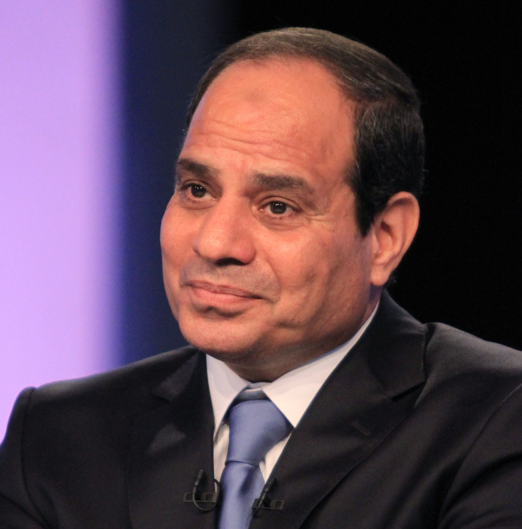 Former Defence Minsiter Abdel Fattah Al-Sisi was interviewed on television for the first time after running for the presidential elections (AFP PHOTO/STR )