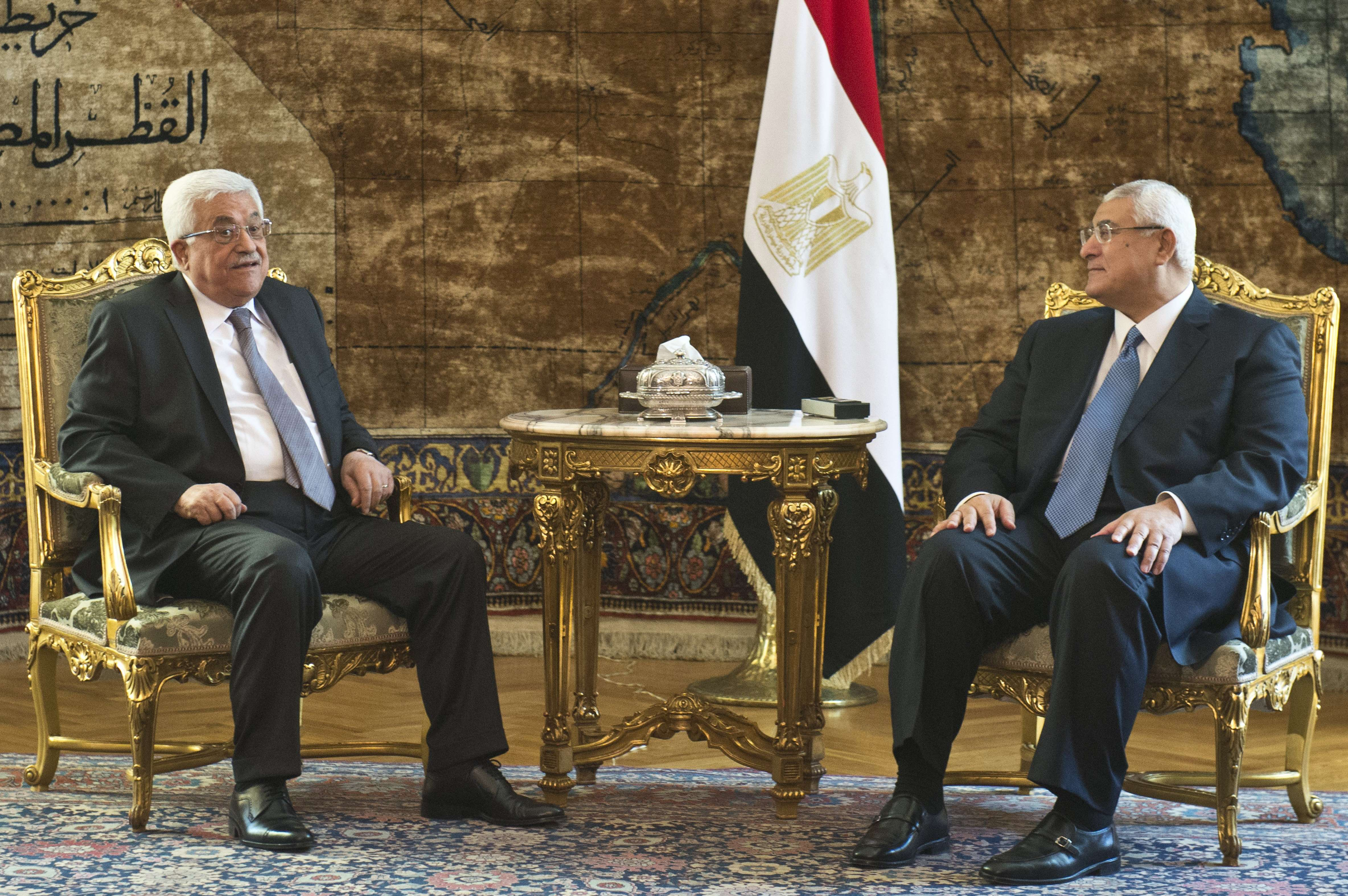 Egypt's interim president Adly Mansour (C-R) and vice president Mohamed El-Baradei (R) meet with Palestinian president Mahmud Abbas (L) at the presidential palace in Cairo on July 29, 2013.  (AFP Photo)