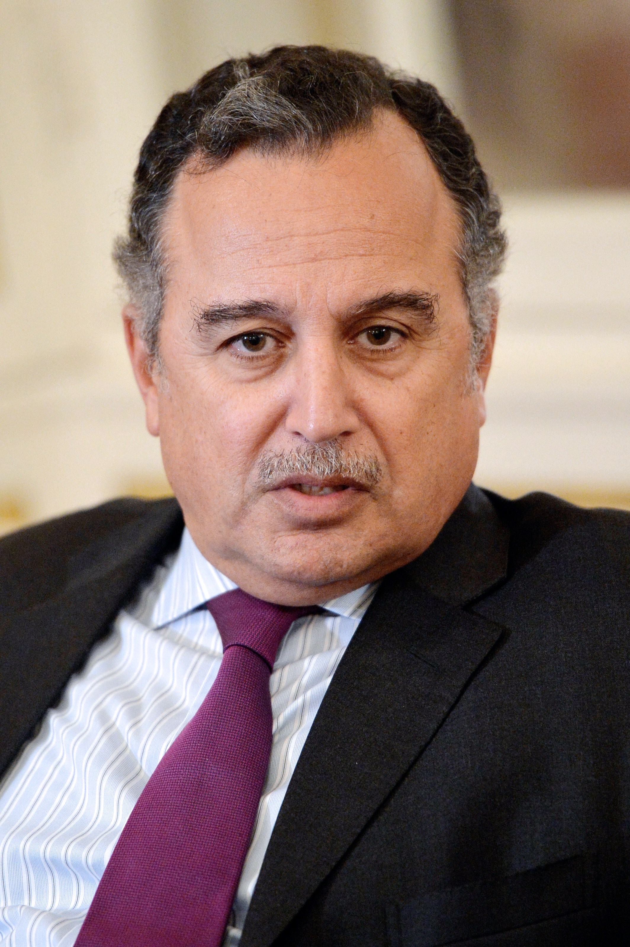 Interim Minister of Foreign Affairs Nabil Fahmy  (AFP Photo)
