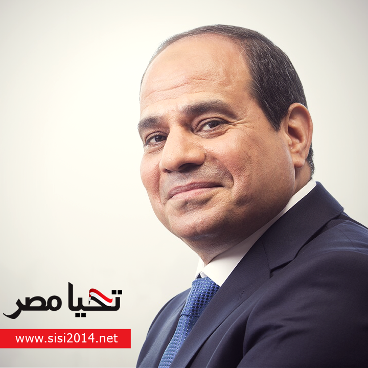 Tahya Masr Fund's donations did not exceed EGP 5-EGP 6bn, according to President Abdel Fattah Al-Sisi in late December 2014. (Photo courtesy of Al-Sisi's official campaign)