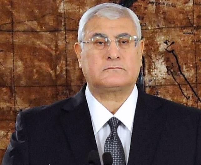 Interim President Adly Mansour (AFP File Photo)