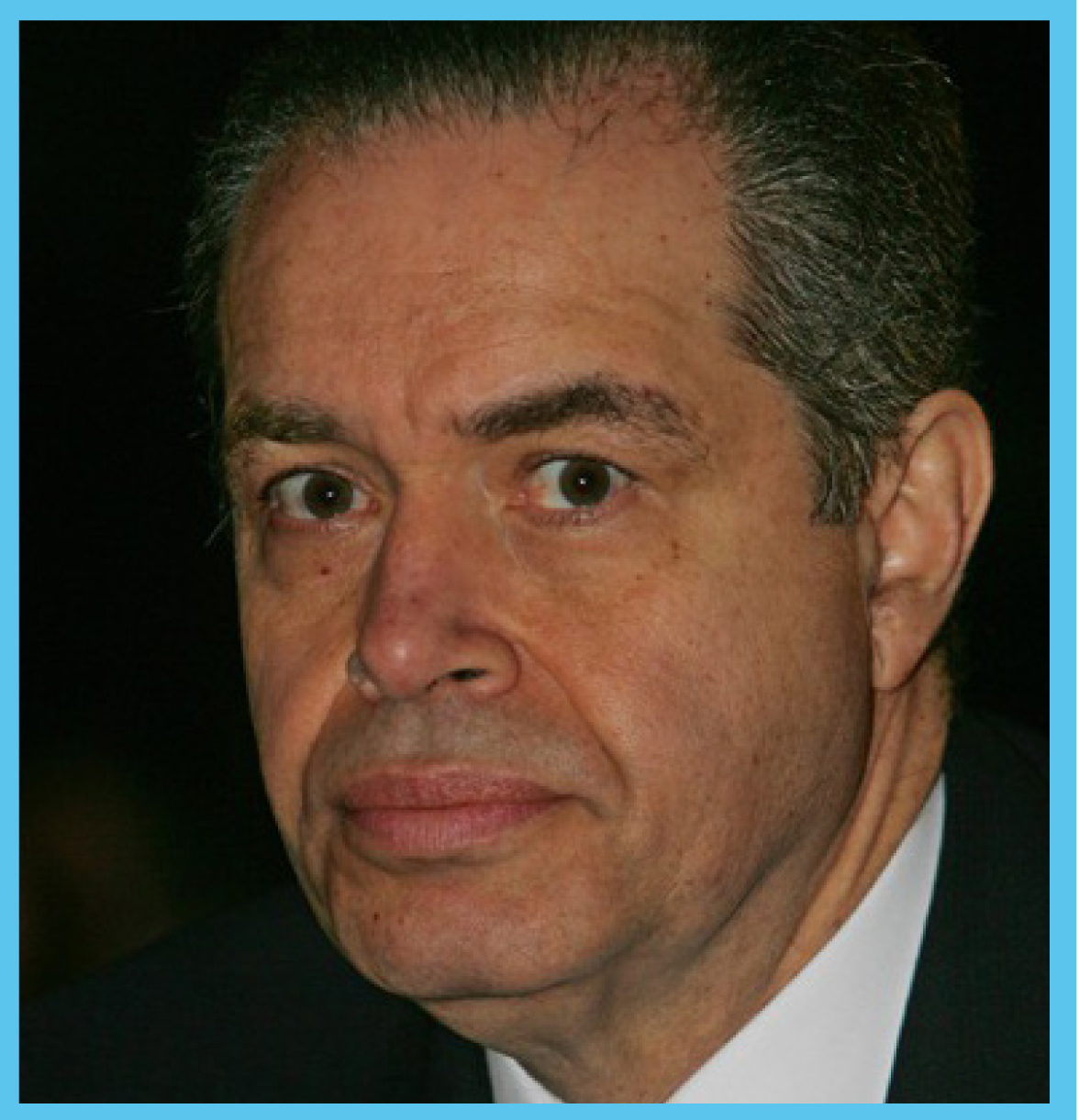 Mohamed Mansour