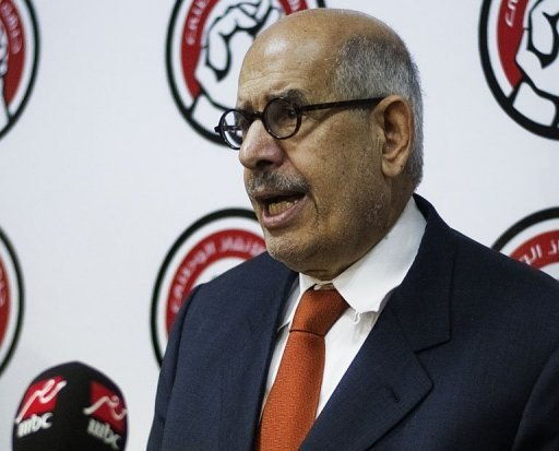 Egypt's interim vice president Mohamed ElBaradei, pictured on June 27, 2013 (AFP/File)