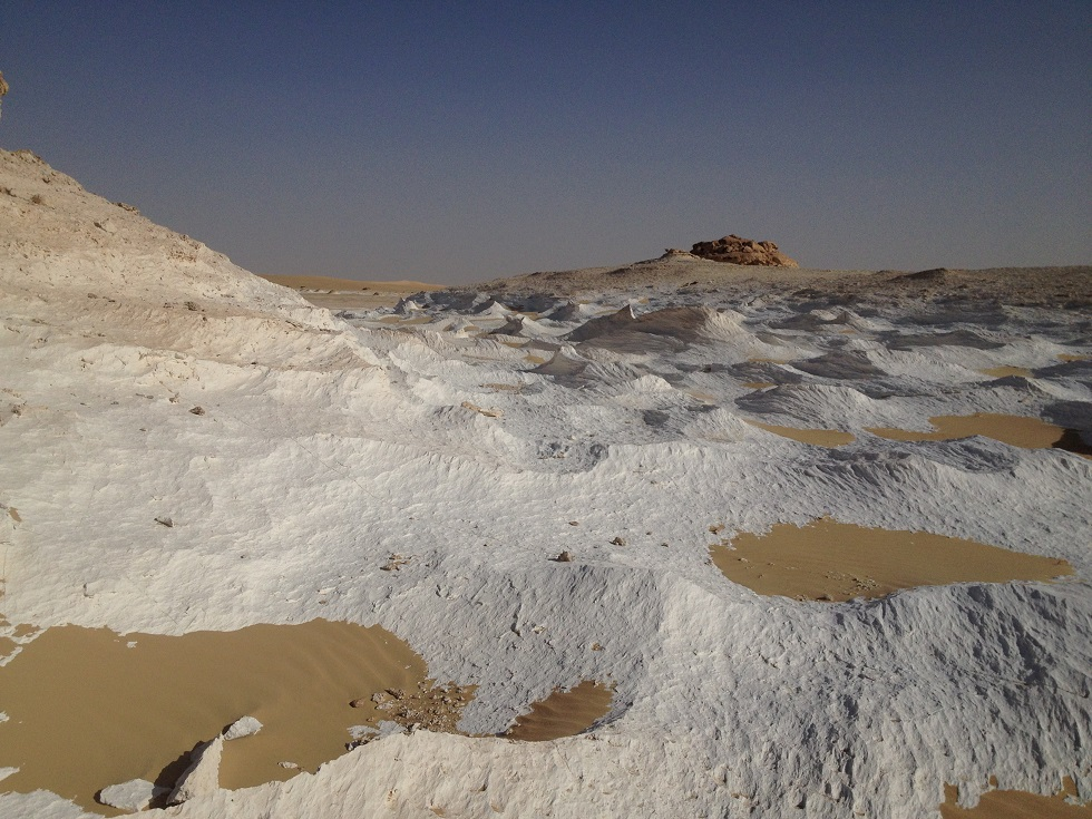 In the desert our guides stopped to show us some interesting geological anomalies such as this patch of 'white desert' as well as a large bolder which turned out to be petrified wood (Photo by Basil El-Dabh )