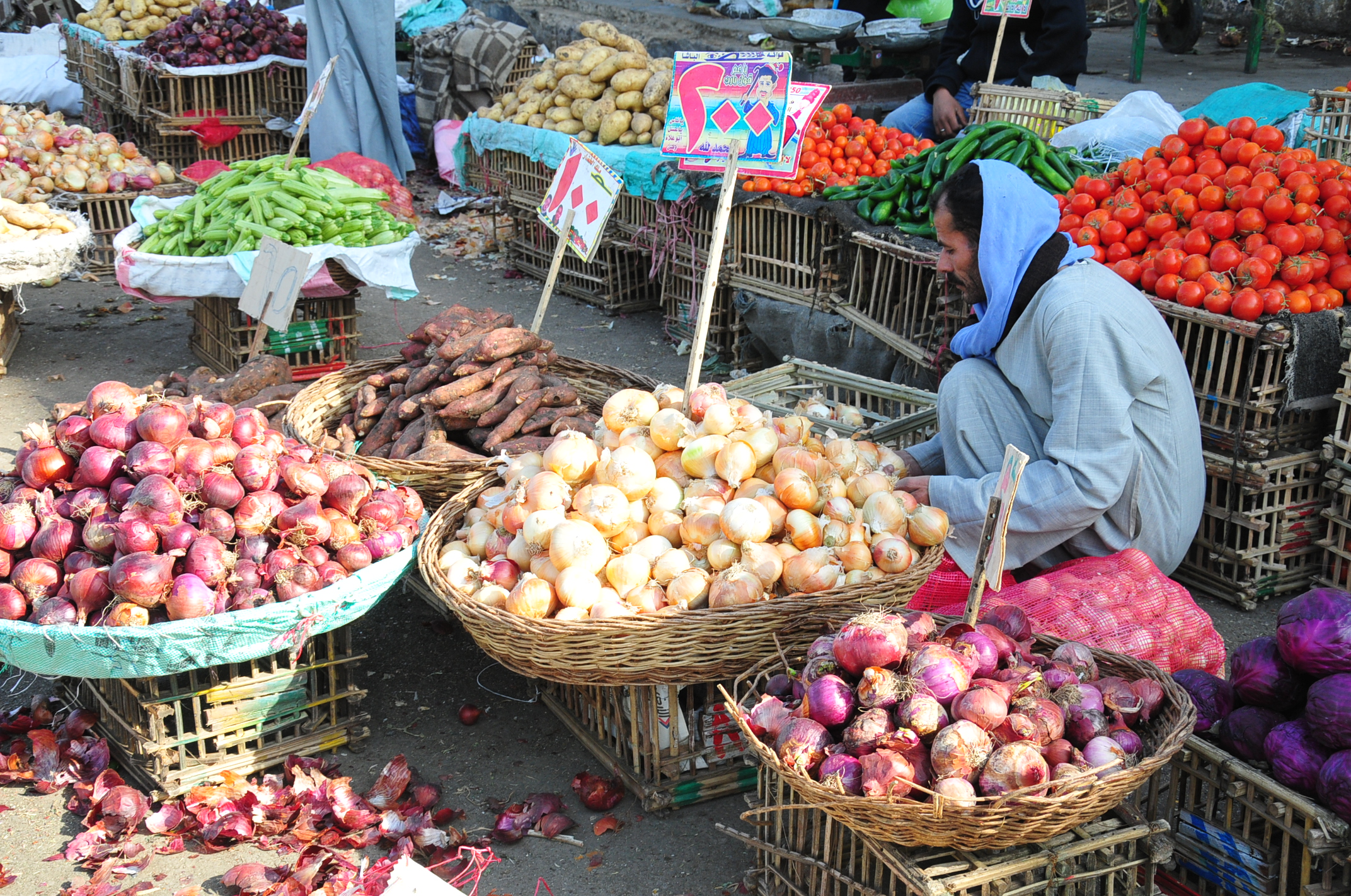 Price caps may be placed on fruits and vegetables as a means for the government to control the market and protect low income consumers (Photo by Hassan Ibrahim\DNE)