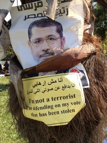"""I am not a terrorist"" posted on a palm tree at pro-Morsi Nahda Square sit in (Photo by Mohamad Nagi/DNE)"