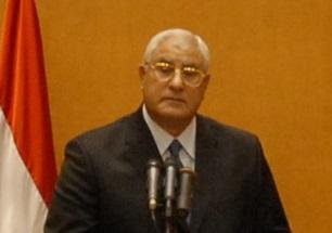 Interim president Adly Mansour (Photo by Mohamed Omar/DNE)