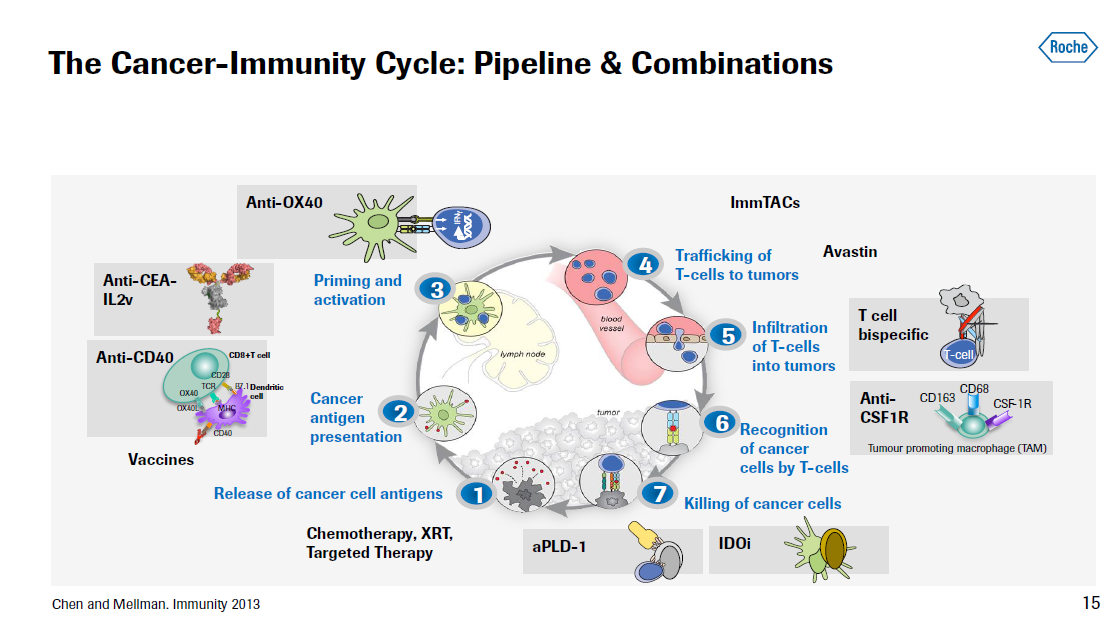 The Cancer immune cycle