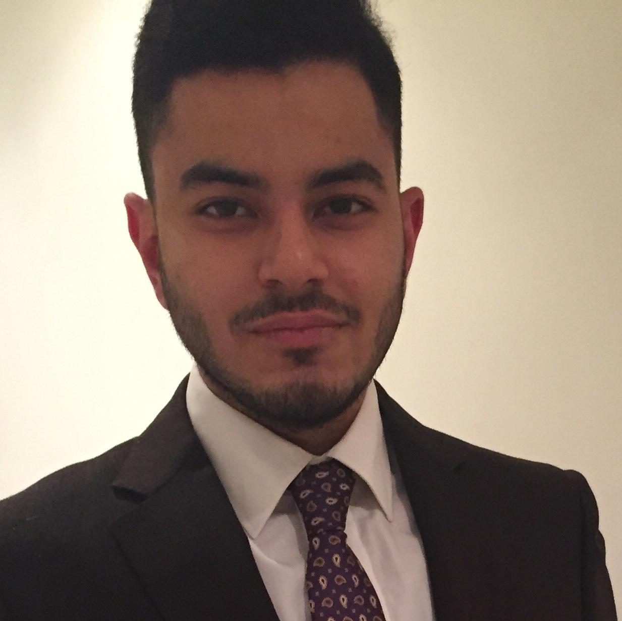 Ahmed M El-Wahsh