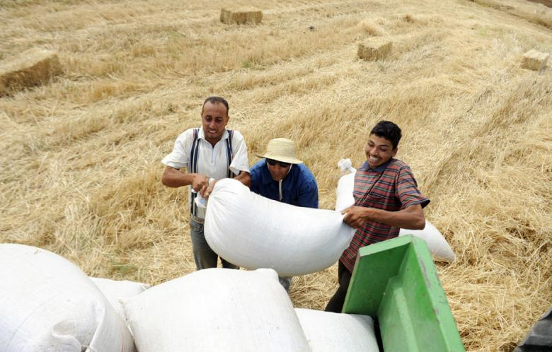 Current wheat stocks will be sufficient until 5 March 2014, as 2.3 million tonnes of wheat were purchased from different origins at a price that is cheaper than the one set three years ago (AFP Photo)