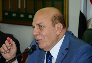 Minister of State for Local Development Adel Labib