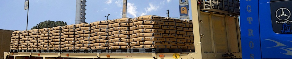 Arabian Cement jumped from EGP 9 to EGP 10.39, with a trading volume of 17.3m shares.  (Photo from Arabian Cement)