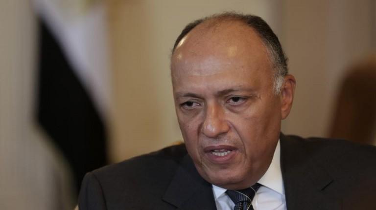 Shoukry, Eritrean officials discuss South Sudan, regional issues ...