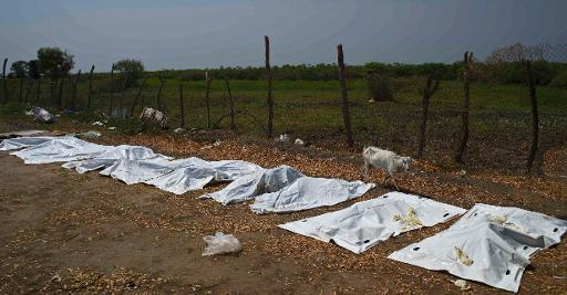 Sheets cover dead bodies in Bor, South Sudan on January 27, 2014  (AFP, Ali Ngethi)