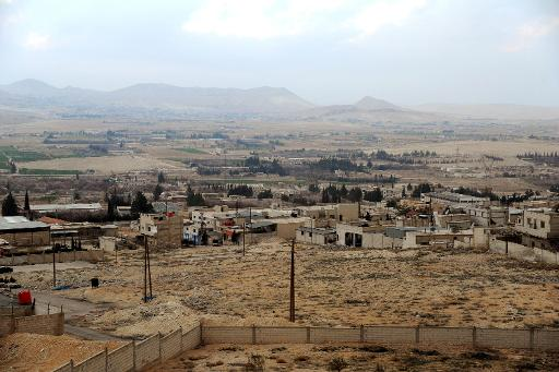 A handout picture released on March 15, 2014, by the official Syrian Arab News Agency (SANA) reportedly shows the city of Yabrud  (SANA/AFP)