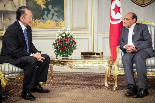 Tunisian President Moncef Marzouki (R) talks with the President of the World Bank Jim Yong Kim on January 23, 2013 in Tunis  (AFP/File)