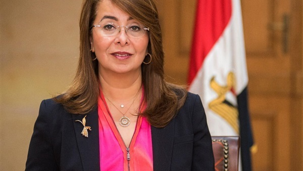 Egypt to amend NGOs Law, provide more liberal draft - Daily