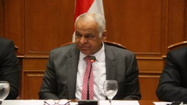 The head of the Egyptian Parliament's industrial committee, Farag Amer, opposed the government's decision to impose extra fees on investors operating Egypt's free zones.