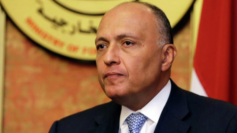 Egypt's Minister of Foreign Affairs Sameh Shoukry has said that Egypt fully respects Ethiopia's rights and interests in generating electricity.
