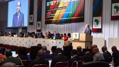 Egypt's President Abdel Fattah Al-Sisi during his visit to Japan