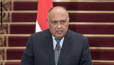 Egypt's Foreign Minister Sameh Shoukry announced, on Monday, that Egypt and Saudi Arabia have reached consensus regarding external interference in the Middle East region