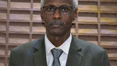 Sudanese Minister of Irrigation and Water Resources Yassir Abbas