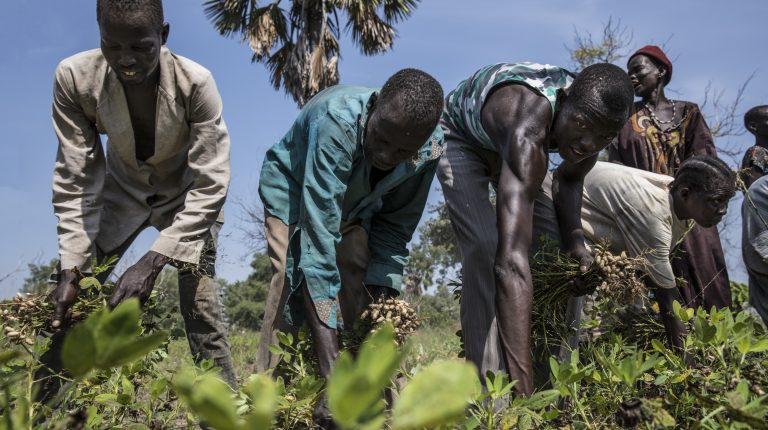 South Sudan signed an agreement with the World Food Programme (WFP) to help speed up agricultural production