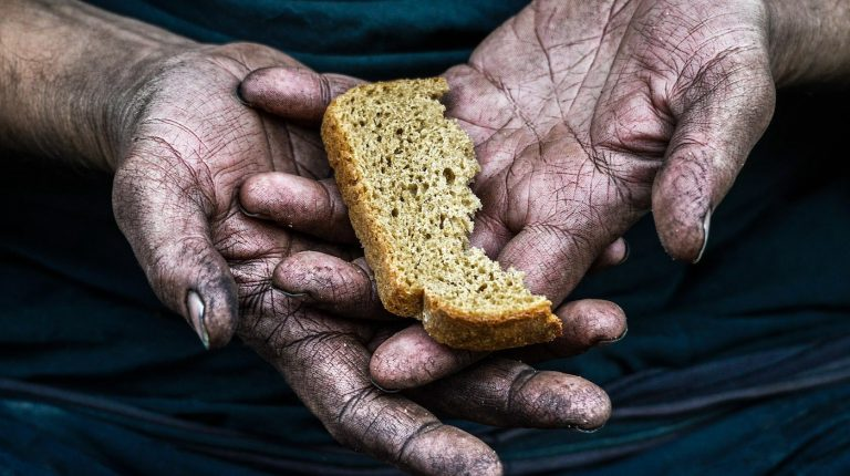 people could slip into hunger as result of COVID-19 food crisis Daily News Egypt