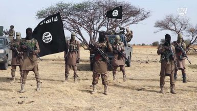 Since 2009, the Boko Haram insurgency has had a devastating impact on the region. The group has been trying to establish an Islamist state in northeastern Nigeria, extending its attacks to countries in the Lake Chad Basin.