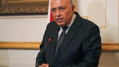 Egypt's Minister of Foreign Affairs Sameh Shoukry received a phone call, on Monday, from his Japanese counterpart Toshimitsu Motegi, during which they discussed ways of strengthening relations between the two countries in various fields.