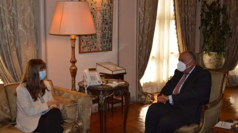 شكري المصري والبنك الأوروبي لإعادة الإعمار والتنمية يبحثان سبل تعزيز التعاون