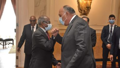 Egypt's Foreign Minister Sameh Shoukry met, on Wednesday, his Eritrean counterpart Osman Saleh and Political Advisor to the Eritrean President Yemane Gebreab in Cairo. They discussed the latest developments in the Horn of Africa and the ongoing conflict in Ethiopia's Tigray region.