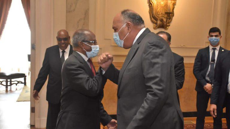وزيرا خارجية مصر وإريتريا يبحثان تطورات الأوضاع في منطقة القرن الأفريقي
