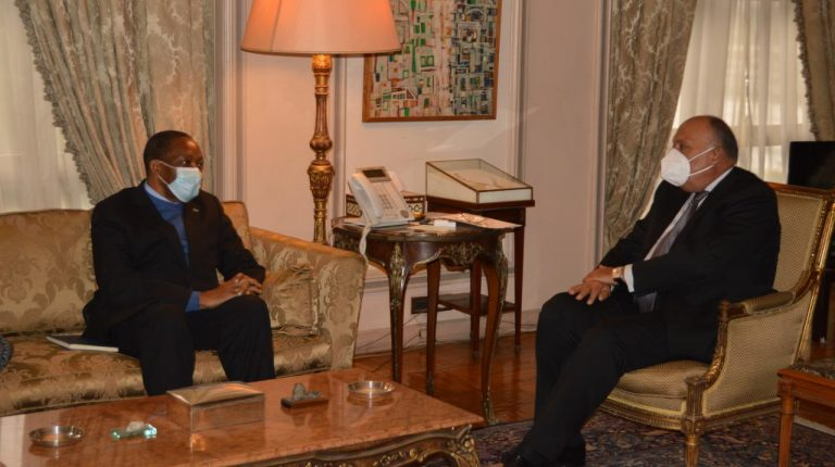 Egypt's Foreign Minister Sameh Shoukry met, on Wednesday, Professor Alphonse Ntumba Luaba, the coordinator of DR Congo working committee preparing for the country's future term as chair of African Union (AU), starting in February 2021.