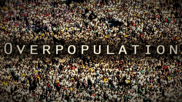 Egypt's Minister of Planning and Economic Development, Hala El-Said, has revealed that if the country's population growth rate stabilises at the current 2.56%, the Egyptian people will reach 132.3 million by 2030.
