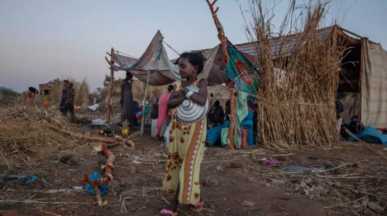 اللاجئون الإريتريون في تيغراي بحاجة إلى مساعدة إنسانية عاجلة: المفوضية السامية للأمم المتحدة لشؤون اللاجئين